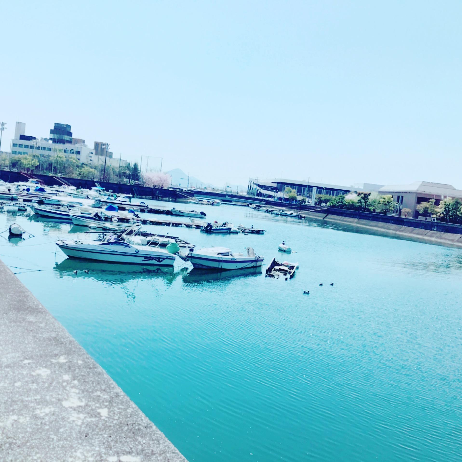 釣りのスポット草津港