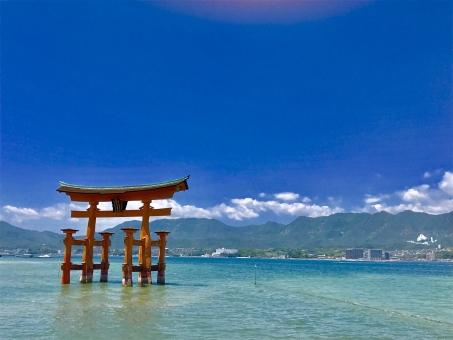 全国みなさん!広島は元気に頑張ってますよ!!!
