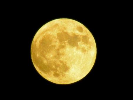 満月の夜の翌日に発売される「満月かまぼこ」