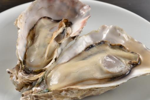 広島の牡蠣かきといえば【r】の時期とよくいわれます