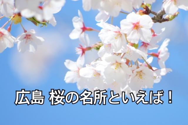 広島 桜の名所といえば!
