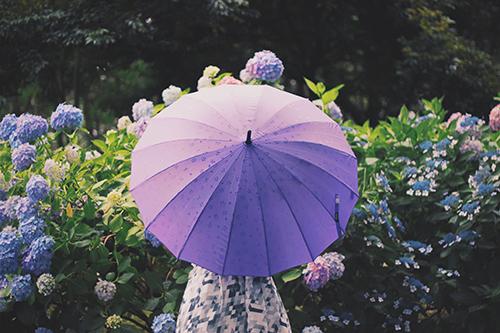 雨の日の広島観光オススメスポット