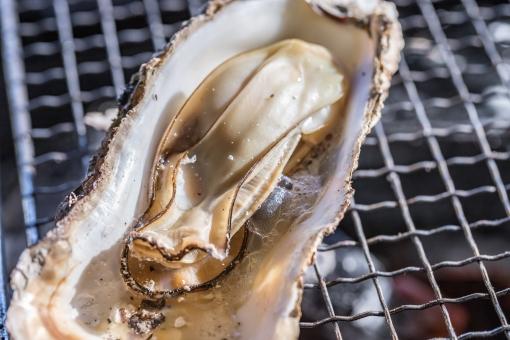 広島の郷土鍋「牡蠣の土手鍋」